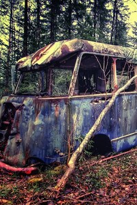 1440x2960 Old Vintage Bus In Forest