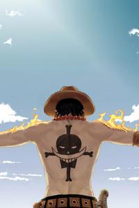 640x960 One Piece 4k
