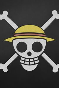1280x2120 One Piece Anime Skull