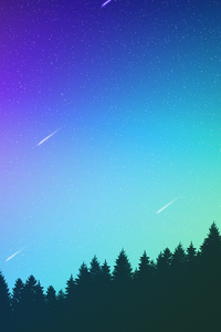 1080x2280 Open Sky Trees Aurora 4k