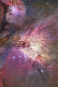 480x800 Orion Nebula