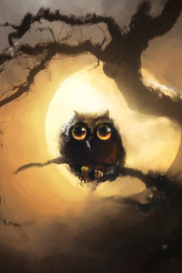 750x1334 Owl And Moon