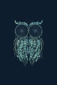 480x800 Owl Art