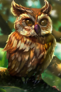 Owl Colorful Art