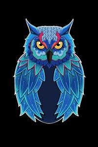 Owl Dark 5k