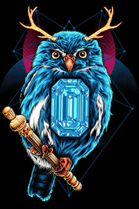 1440x2960 Owl Dark Black 4k