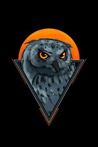Owl Minimal 4k