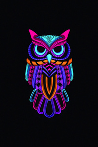 800x1280 Owl Minimal Dark 4k