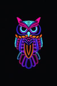 Owl Minimal Dark 4k
