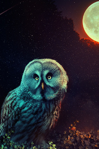 750x1334 Owl The Night Guard