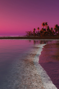 1080x2280 Palm Trees Sunset Digital Nature 4k