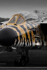 540x960 Panavia Tornado