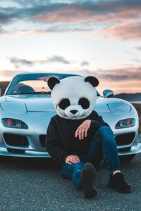 320x480 Panda Boy With Cars 5k