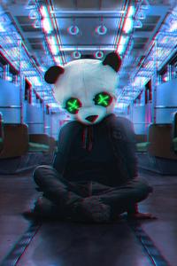 320x480 Panda Face Mask Train
