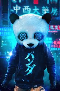 Panda Guy 4k