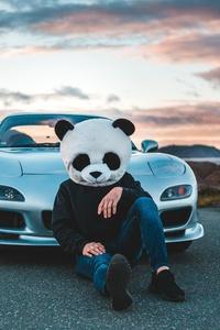 1080x1920 Panda Helmet Guy With Cars