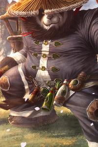 1125x2436 Panda Warrior 4k