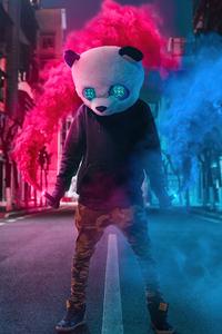 Panda With Two Smoke Bombs 4k