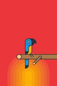 320x480 Parrot Minimalism 5k