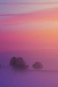 640x1136 Pastel Morning 5k