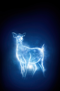 240x320 Patronus Charm Harry Potter And Fantastic Beasts