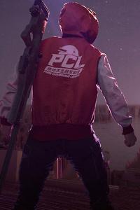 Pcl 2020