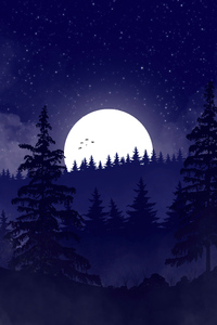1440x2960 Peaceful Evening Minimal 5k