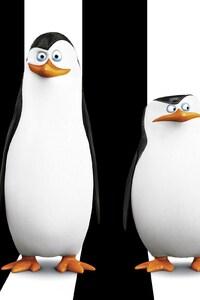 Penguins Of Madagascar Movie HD Desktop