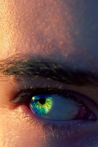 Person Eye Macro