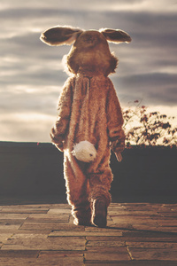 2160x3840 Person In Bunny Costume Walking Forward