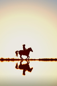 Person Riding Horse Silhouette