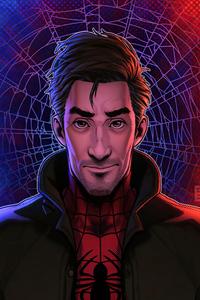 320x480 Peter B Parker Spider Verse