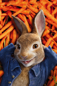 640x1136 Peter Rabbit 2018