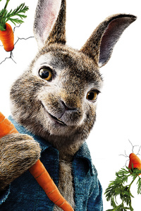 Peter Rabbit 5k