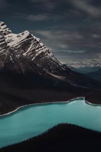 1440x2560 Peyto Lake Banff Canada 5k