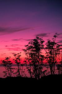 1440x2560 Pink Sunset Lake Side 5k