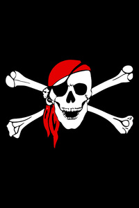 2160x3840 Pirate Flag Skull