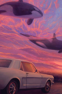 540x960 Place Where Whales Fly