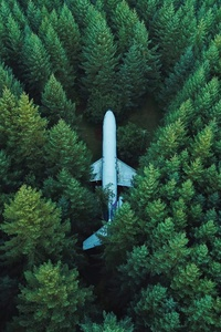 750x1334 Plane In Middle Of Forest 4k