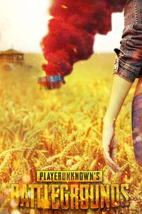 Playerunknowns Battlegrounds 1080P
