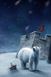 320x568 Polar Art