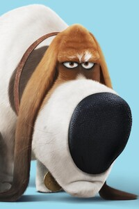 750x1334 Pops The Secret Life Of Pets