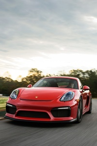 240x400 Porsche Cayman GT4 911 GT3 RS