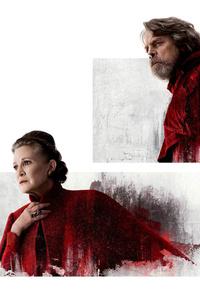 Princess Leia And Luke Skywalker In Star Wars The Last Jedi
