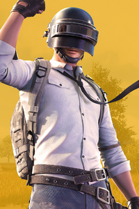 2160x3840 Pubg Helmet Guy 2020 4k