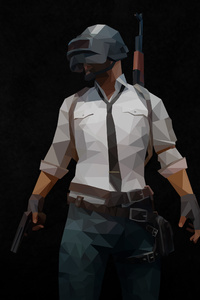 480x854 Pubg Polygon Arts