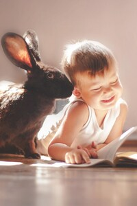 1440x2960 Rabbit And Children Cute