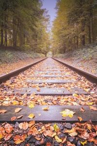 540x960 Railway Track