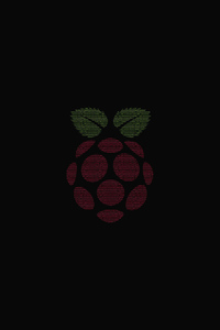 1125x2436 Raspberry Pi Computer Logo