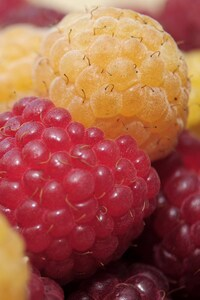 1080x2160 Raspberry